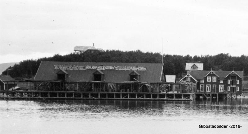 Kulstationen og administrasjonsbygget ca 1913. Foto fra Nasjonalbiblioteket.