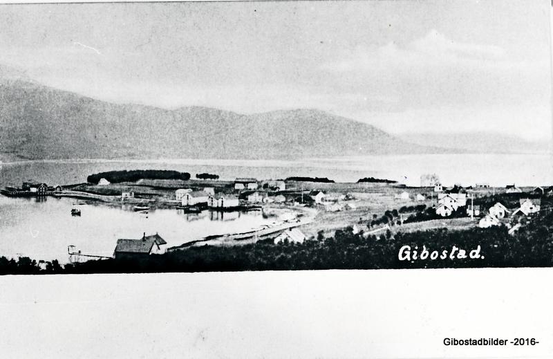 Gibostad ca 1915. Utgiver OMN. Norsk lystryk & reproduktionsanstalt nr 224
