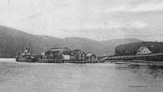 Dampskip ved Kulstationen ca 1913