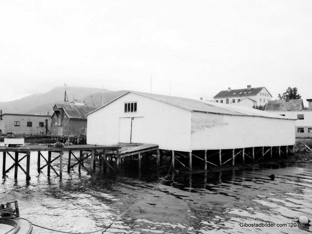 Per-Gamle-Gibostad-ca1974 (13)-001